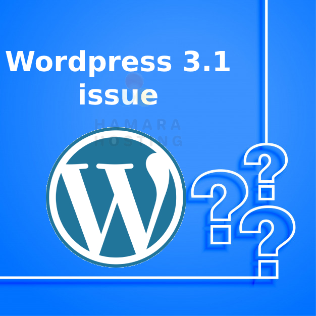 WordPress 3.1 issue